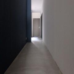 ゲストハウス/リノベーション/簡易宿所/壁紙/モルタル/クロス/... ゲストハウス廊下。1階の床は廊下・宿泊室…