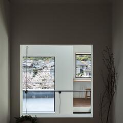新築/木造/住宅/間取り/戸建て/大阪/... 和室の窓から大きな家、テラス、桜並木を見…