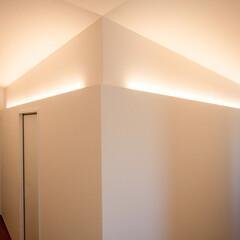 廊下/回廊/通路/間取り/平屋/間接照明/... ファミリークローゼットが収まるキューブ。…