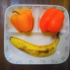 コンロ専用パネル/油跳ね防止パネル/男の台所/アイランド型キッチン/対面キッチン/なっかん/...  ~うれし皿。~  うれしくて、うれしく…