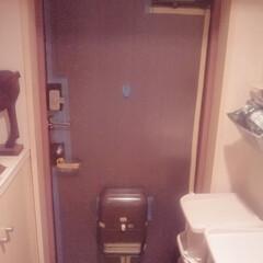 プチプチシート/雪女/白い息/極寒/寒さ対策 プチプチシートを、玄関ドア―内側全面に貼…(1枚目)