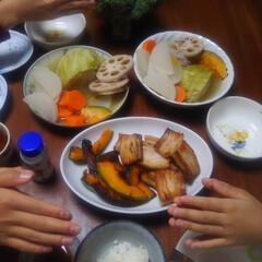 コンロ専用パネル/おうちごはん/なっかん/油跳ね防止パネル/アイランド型キッチン/対面キッチン/... ~野菜煮込みと豚肉焼き。~   長男・次…