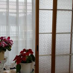 和室を洋風に/障子/障子の張替え/ガラスシート/和室を洋室にリメイク/障子リメイク/... 実家の障子のリメイクです。 あと少しで、…(3枚目)