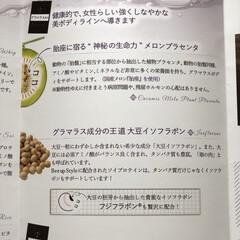 Bee up Style Chocolate風味 | Bee up Style(ソイプロテイン)を使ったクチコミ「『ビーアップスタイル』のモニターをさせて…」(3枚目)