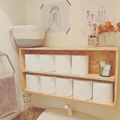 ウタマロクリーナー   ウタマロ(その他洗剤)を使ったクチコミ「先日、トイレに掃除道具や洗剤などを入れる…」(3枚目)