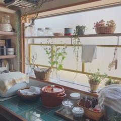 ラブリコ/窓枠DIY/タイルDIY/お花のある暮らし/ナチュラル/暮らし/... うちは賃貸なんですが、キッチンの所に大き…(2枚目)