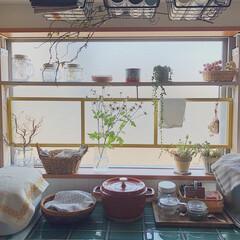 ラブリコ/窓枠DIY/タイルDIY/お花のある暮らし/ナチュラル/暮らし/... うちは賃貸なんですが、キッチンの所に大き…(1枚目)