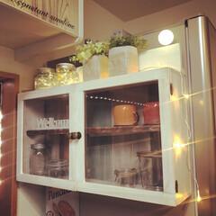 飾り棚DIY/フェイクグリーン/LEDライト/ショーケースDIY/キッチン収納DIY/カフェ風/... 冷蔵庫の横に棚を作りました( ¨̮ )︎…