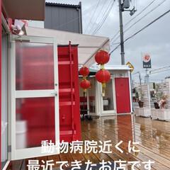 沖縄黒糖ミルクタピオカ/TAI RAKU CHA 雨降り⋰⋰ ☂ ꒰´•௰•`๑꒱⋱⋱…ア…