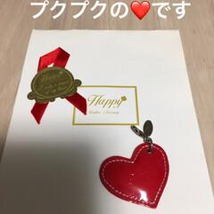 キーホルダー/チャーム/皮/令和元年フォト投稿キャンペーン/雑貨 お店のオリジナルです♡ 赤が可愛い❤️で…