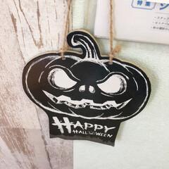 """3COINS/HAPPY HALLOWEEN/スコティッシュフォールド垂れ耳/スコティッシュフォールド立ち耳/ハロウィン2019 こんにちは(*Ü*)ノ""""☀ HAPPY …(8枚目)"""
