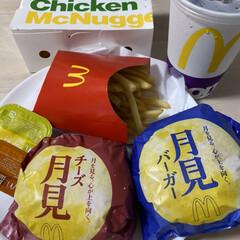 満腹/久しぶり/マクド/月見バーガー/お昼ごはん/スコティッシュフォールド折れ耳/... こんにちはヽ(^0^)ノ 久しぶりですm…