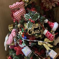 せんぶちょ/スコティッシュフォールド/飾り/クリスマスツリー/クリスマス こんばんは🌙*.。★*゚ 何かXmas作…(4枚目)