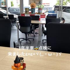 こむぎ/オイル交換/1年半定期検査/トヨタカローラ/トヨタ もう少しで☔やみそうですが( ・∇・) …