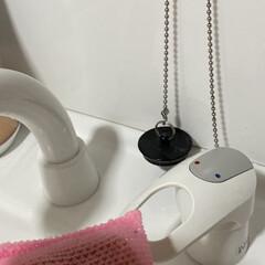 栓が邪魔にならない/栓の鎖がピッタリ/水周り掃除楽/生活の知恵/掃除/水回り掃除/... ダイソーの猫型ケーブルホルダーが 栓の鎖…