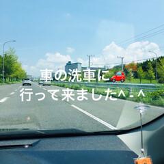 お出かけ/ピカピカ/車/洗車/猫派/フォロー大歓迎/... 気持ちいい〜 車の中は╰(*´︶`*)╯…