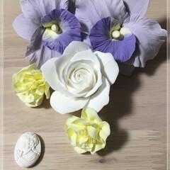薔薇/カトレア/花/粘土細工/令和の一枚/フォロー大歓迎 先程家にも春が(((o(*゚▽゚*)o)…
