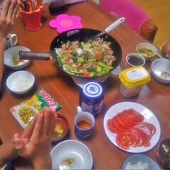 コンロ専用パネル/対面キッチン/アイランド型キッチン/油跳ね防止パネル/キッチン大好き。/キッチンパネル/...  ~ トマトと牛ときゅうりの炒め物。 ~…
