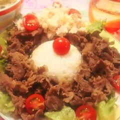 男の台所/キッチン/キッチンパネル/コンロ/油はね防止/お洒落/... 昨晩は、牛肉の甘辛煮丼でした。  味付け…