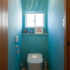 トイレ/ビーチスタイル/カリフォルニアスタイル ブルーのクロスを使ってトイレもビーチスタ…