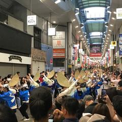 高円寺/踊り/阿波踊り/祭り/中央線/東京/... 高円寺の阿波踊りに行ってきました。(1枚目)