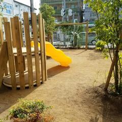 遊具/家庭用遊具/保育園/幼稚園/滑り台/家庭用/... 自然工房ウッドウォームズ 新商品の木製滑…