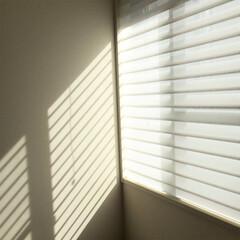 寝室/寝室インテリア/ハンターダグラス/シルエットシェード 寝室のブラインドをハンターダグラスの シ…