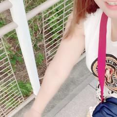 「江ノ島の叔母の家へー富士山めちゃくちゃキ…」(3枚目)