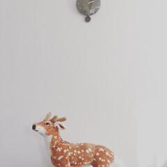 電波時計/時計/座れる動物シリーズ/シカ/鹿/イス/... ニトリで買った電波時計と 座れる動物シリ…