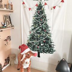 クリスマス/ツリータペストリー/ツリー/動物/鹿/DIY/... 我が家のクリスマスツリー(*´꒳`*) …