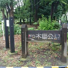 木場公園 癒される木場公園🌿🌿