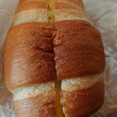 バチス風パン/塩パン/フォロー大歓迎 塩パン🍞で作って有る卵サンド バチス風の…