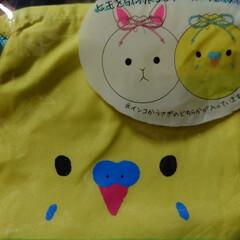 フォロー大歓迎/インコ/セリア インコの巾着とぷちポーチ