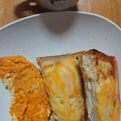 オムレツ/チーズトースト/ミネストローネ/わたしのごはん/おうちごはんクラブ 朝ごはん🌄🍴