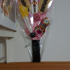 椿神社/出雲大社/厳島神社/羽子板/御朱印/おでかけ/... 今年は、破魔矢は、辞めて羽子板にしてみま…