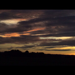夕陽 モンタナの風にふかれてという映画 ありま…