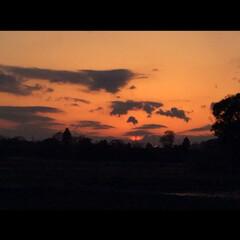 夕陽 旦那さんいわく、モンタナの夕陽の様だと、…(1枚目)