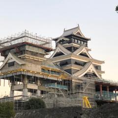 お城/フォロー大歓迎/旅行/風景/冬 熊本城‼️ 2019年波乱の予感😝 正月…