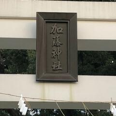 お城/フォロー大歓迎/旅行/風景/冬 熊本城‼️ 2019年波乱の予感😝 正月…(7枚目)