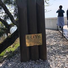 フォロー大歓迎/LIMIAおでかけ部/旅行/風景/わたしのGW GW  弾丸旅行  第4弾 滋賀県は琵琶…(3枚目)