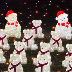 イルミネーション/フォロー大歓迎/冬/おでかけ/グルメ 今年最初のイルミネーション 神戸イルミナ…(3枚目)