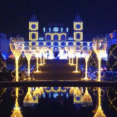 イルミネーション/フォロー大歓迎/冬/おでかけ/グルメ 今年最初のイルミネーション 神戸イルミナ…