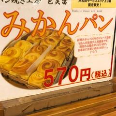 限定!/フード みかんパン‼️ 皆さんご存知でしょうか岸…(2枚目)