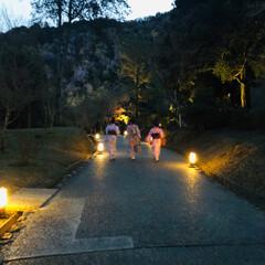 週末探索/風景/おでかけ/旅行 12月9日  京都探索&イルミネーション…(4枚目)