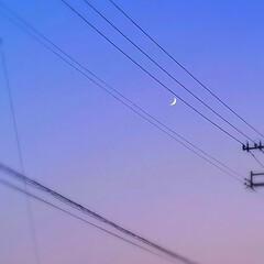 空/月/夕方/帰路/暮らし 夕方、ふと見上げると  細ーーーーい、月…