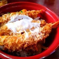 お気に入り/マイブーム/えび丼/お弁当/おすすめアイテム/鎌倉/... 最近、体調を崩しまして。  体調は悪いけ…