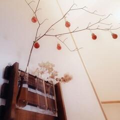ブランチツリー/ドウダンツツジ/salut!/クリスマス2019/リミアの冬暮らし/セリア/... Salut!の一輪挿しに挿してたドウダン…