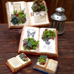 手作り/DIY/モルタル造形/モルタルbook/わたしの手作り 最近はハマったモルタルbook鉢!調子に…