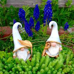 トムテ/お気に入り/妖精/ガーデン/わたしのお気に入り 家の守り神の妖精のトムテが最近我が家にや…