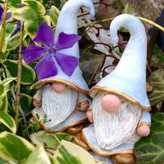 トムテ/妖精/守り神/可愛い/ガーデン/わたしのお気に入り 家の守り神の妖精のトムテが最近我が家にや…
